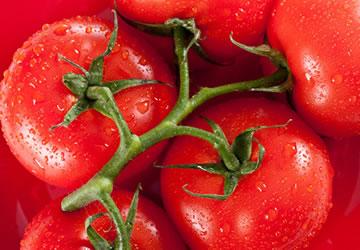 西红柿和大蒜的正确吃法 文章
