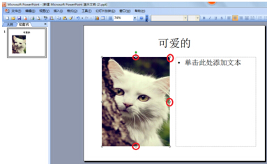 ppt如何让文字环绕图片 文章 第10张